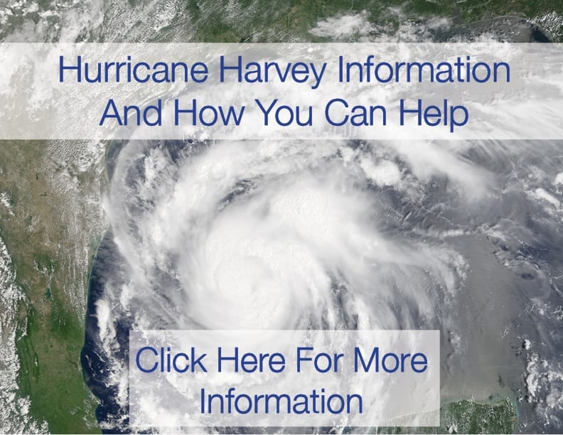 Hurricane Harvey Relief Information